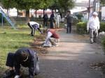 園路の清掃・整備をする会員たち